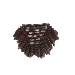 clip in kinky curly brown